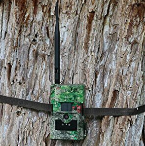 Boly-3G-Wireless-trail-cam-sends-pictures-to-your-mobile